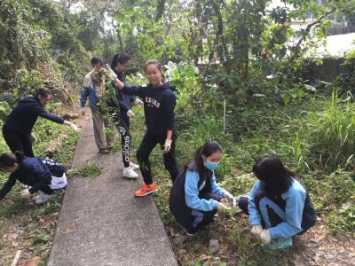 Volunteering at Fung Yuen Butterfly Reserve
